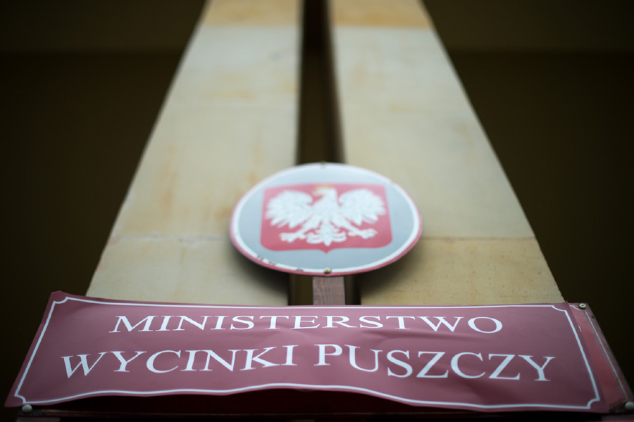 PiS wycinką Puszczy naruszyło prawo. Będzie komisja śledcza?